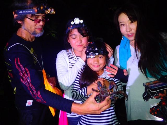 石垣島のホタルを見るナイトツアー