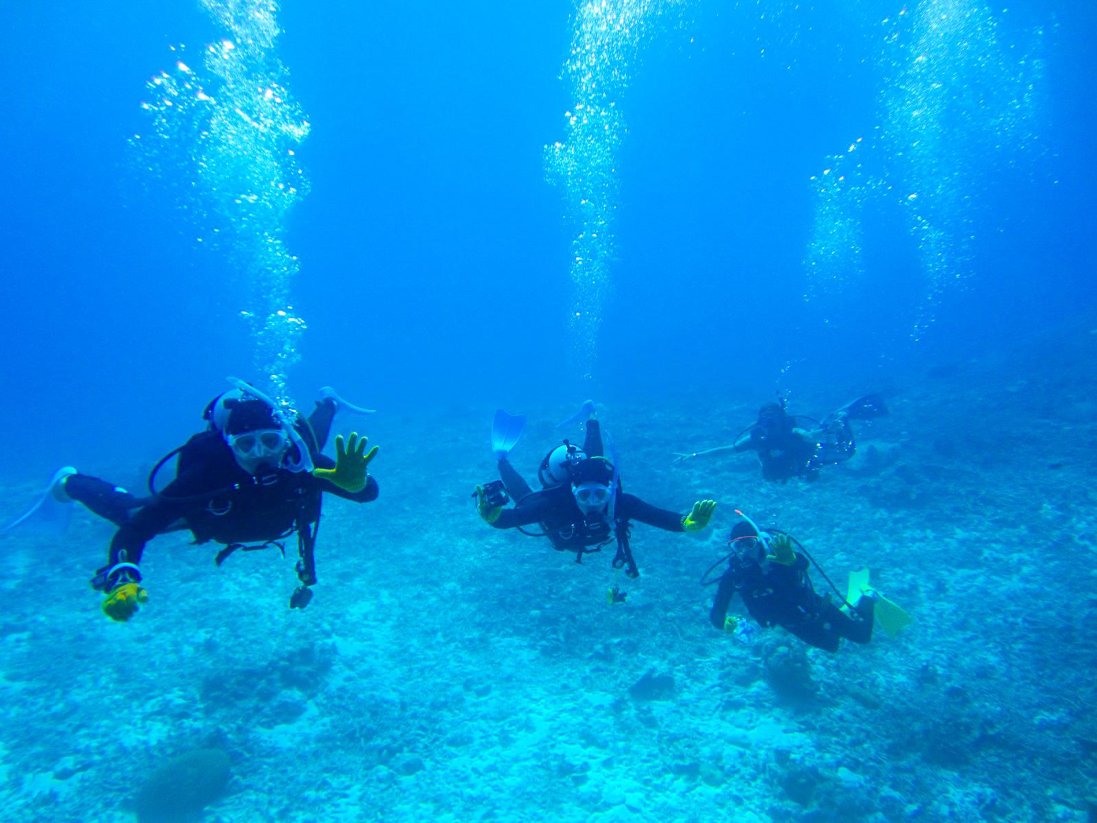 団体旅行で石垣島体験ダイビングに参加