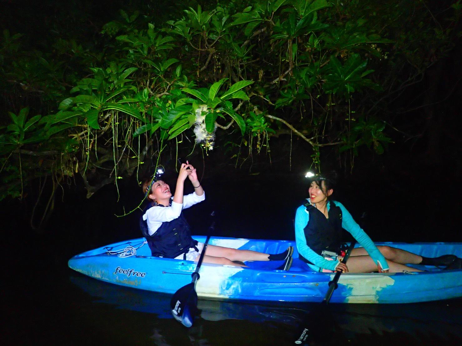 石垣島のナイトカヌーツアー
