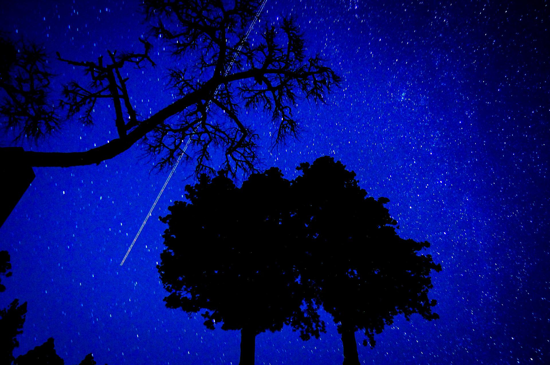 石垣島での星空ナイトツアーは流れ星がみえる