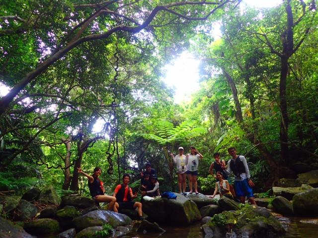 石垣島から日帰りで行ける西表島カヌーツアー