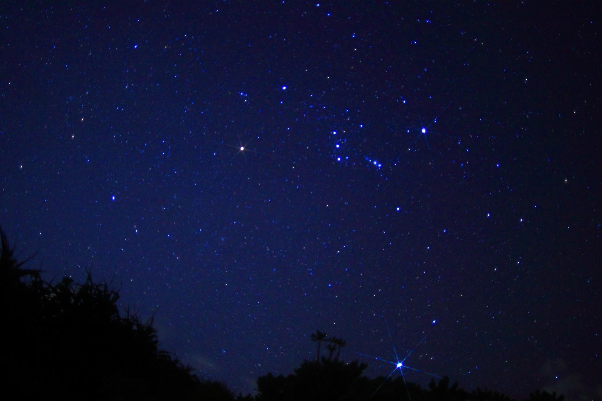 流れ星の見える夜空
