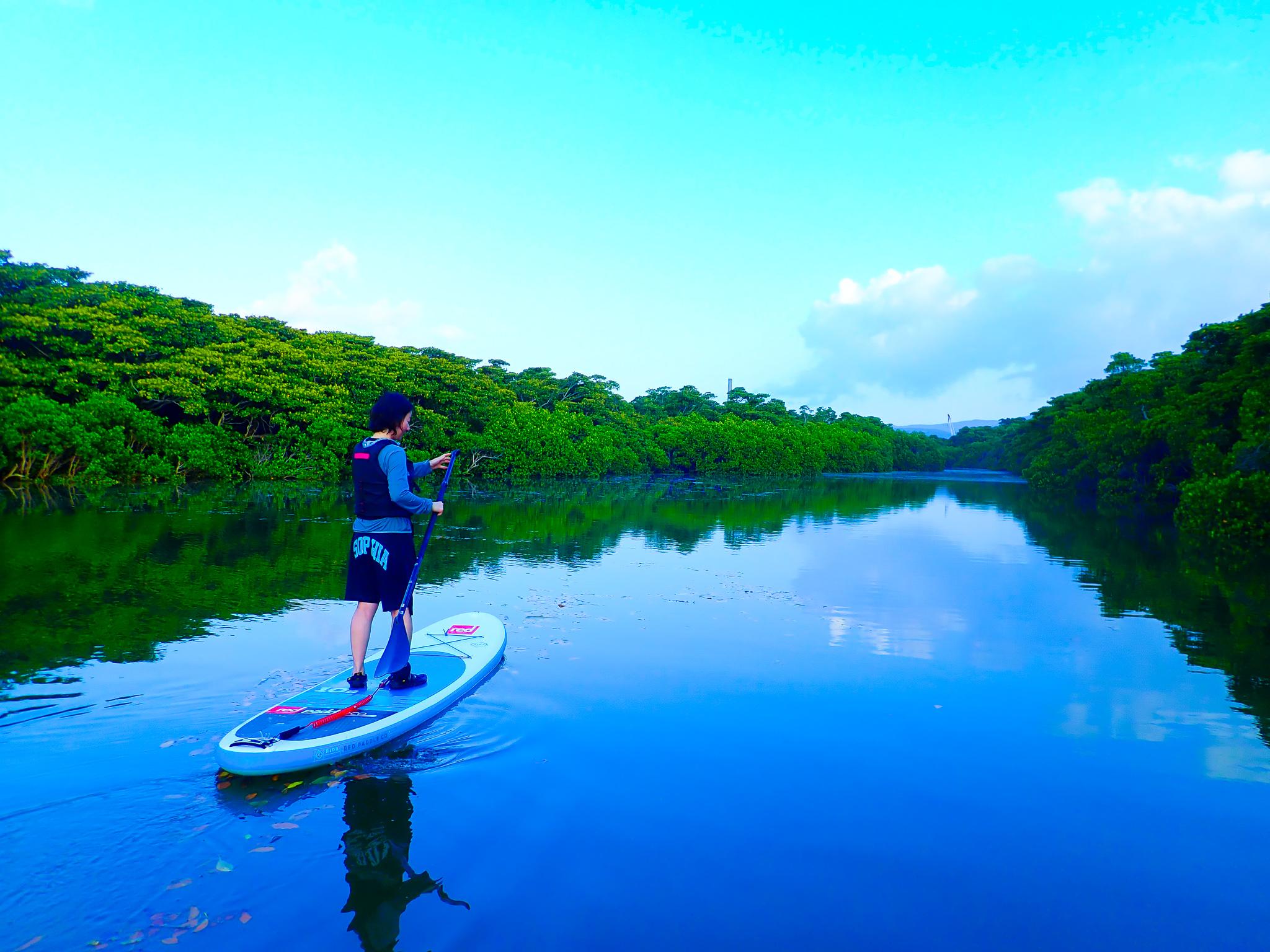 天然記念物に指定されている宮良川を一人SUPで楽しむ