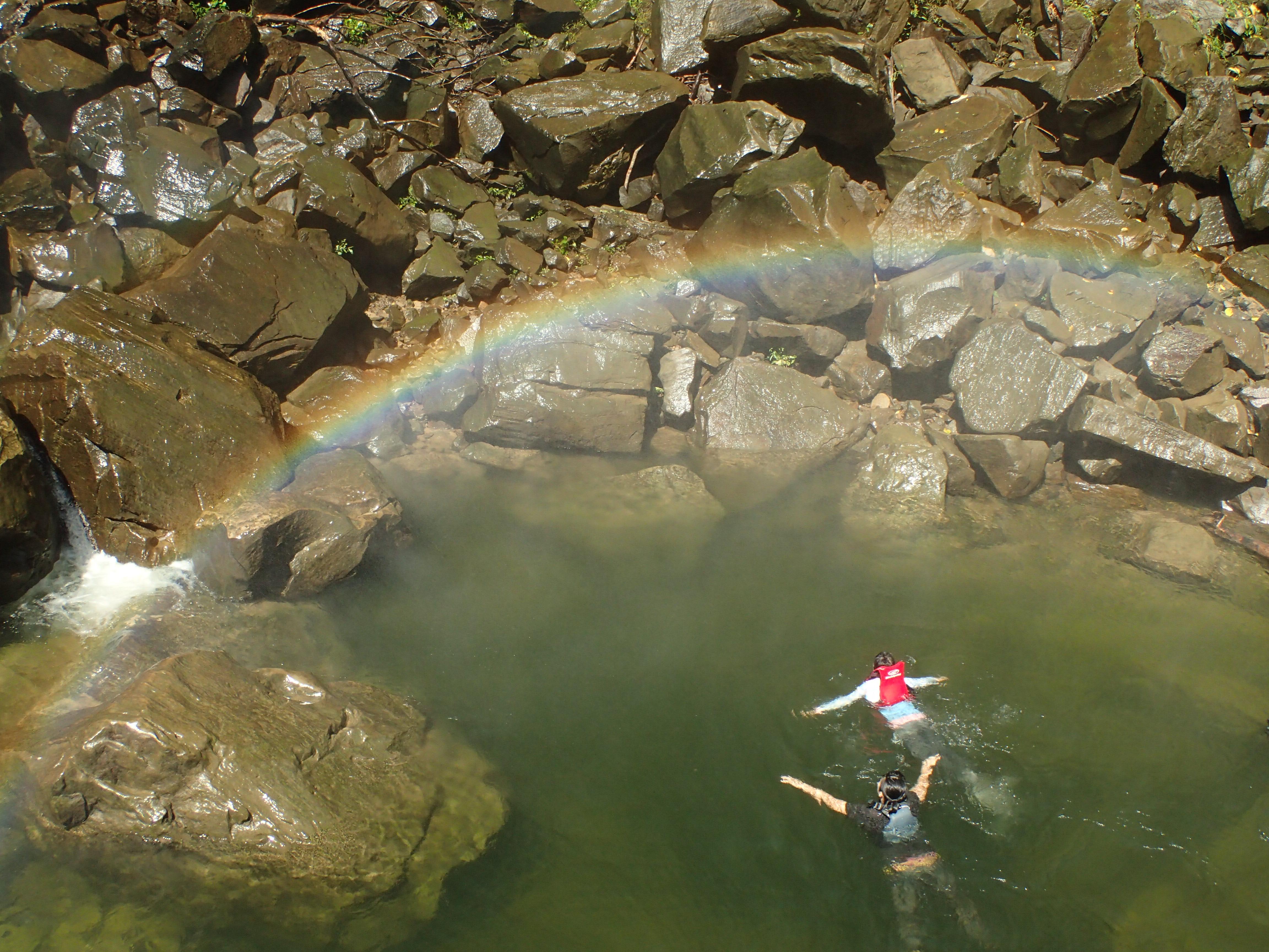 西表島からカヌーで行くピナイサーラの滝つぼツアー