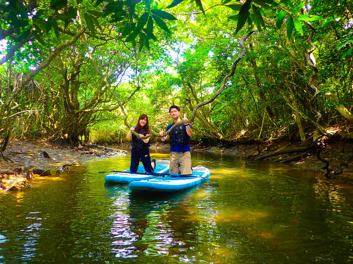 雨の日にマングローブSUPを楽しむカップル
