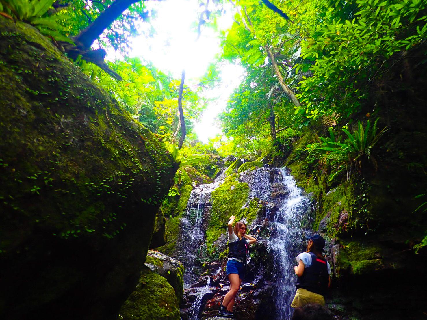 屋比久の滝と呼ばれる石垣島随一の滝