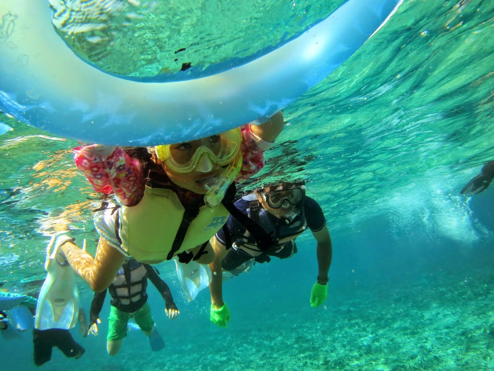 西表島の星の砂浜シュノーケリングアクティビティ