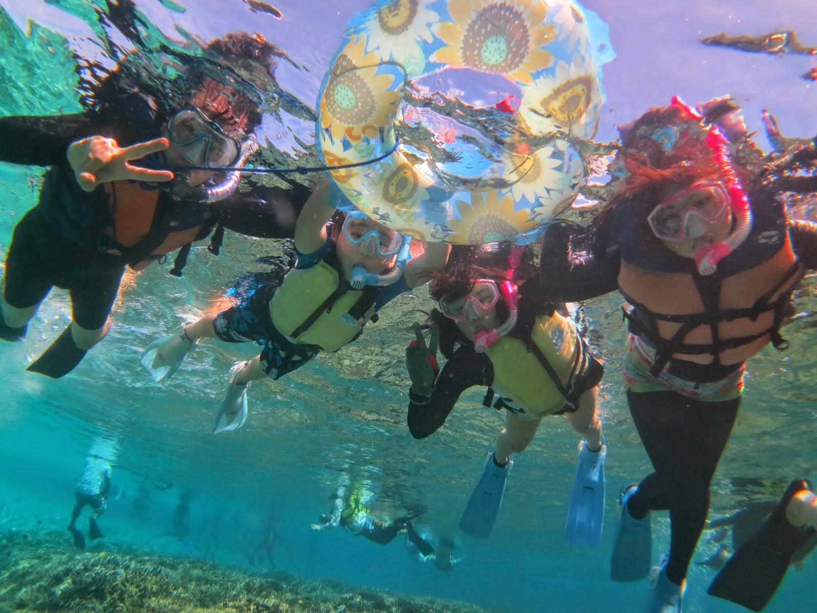 カラフルサンゴの西表島シュノーケルアクティビティ