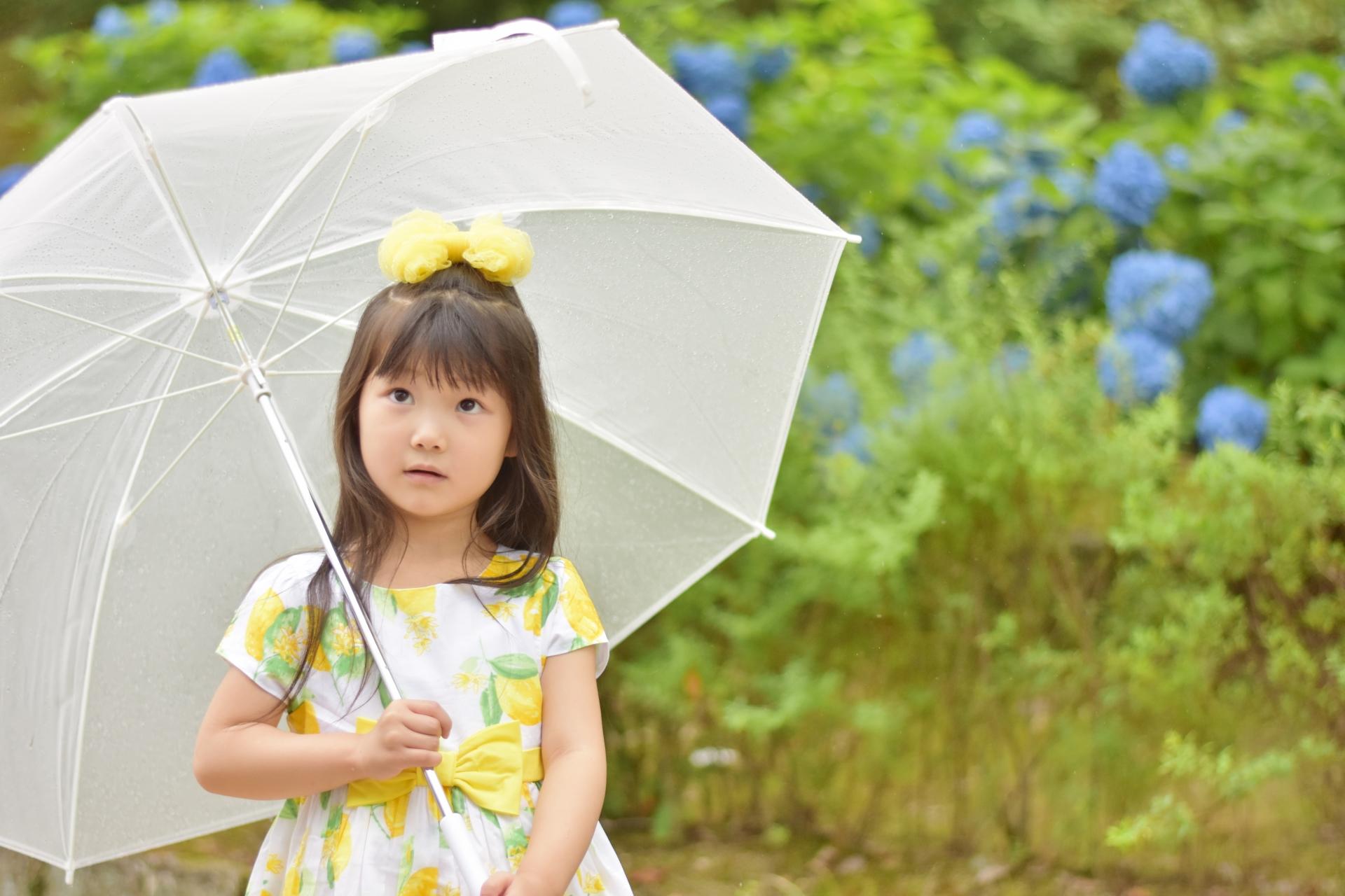 石垣島の雨の日を楽しむ