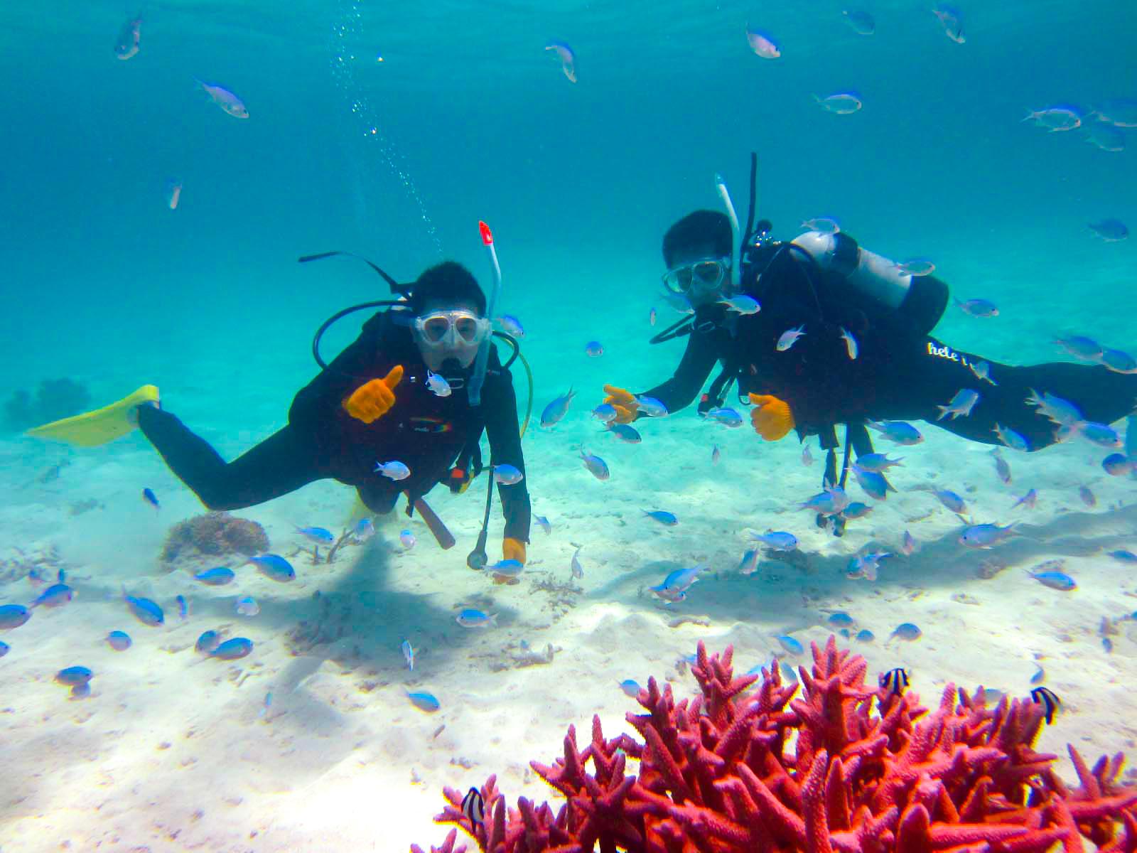 体験ダイビングに参加する男性グループ