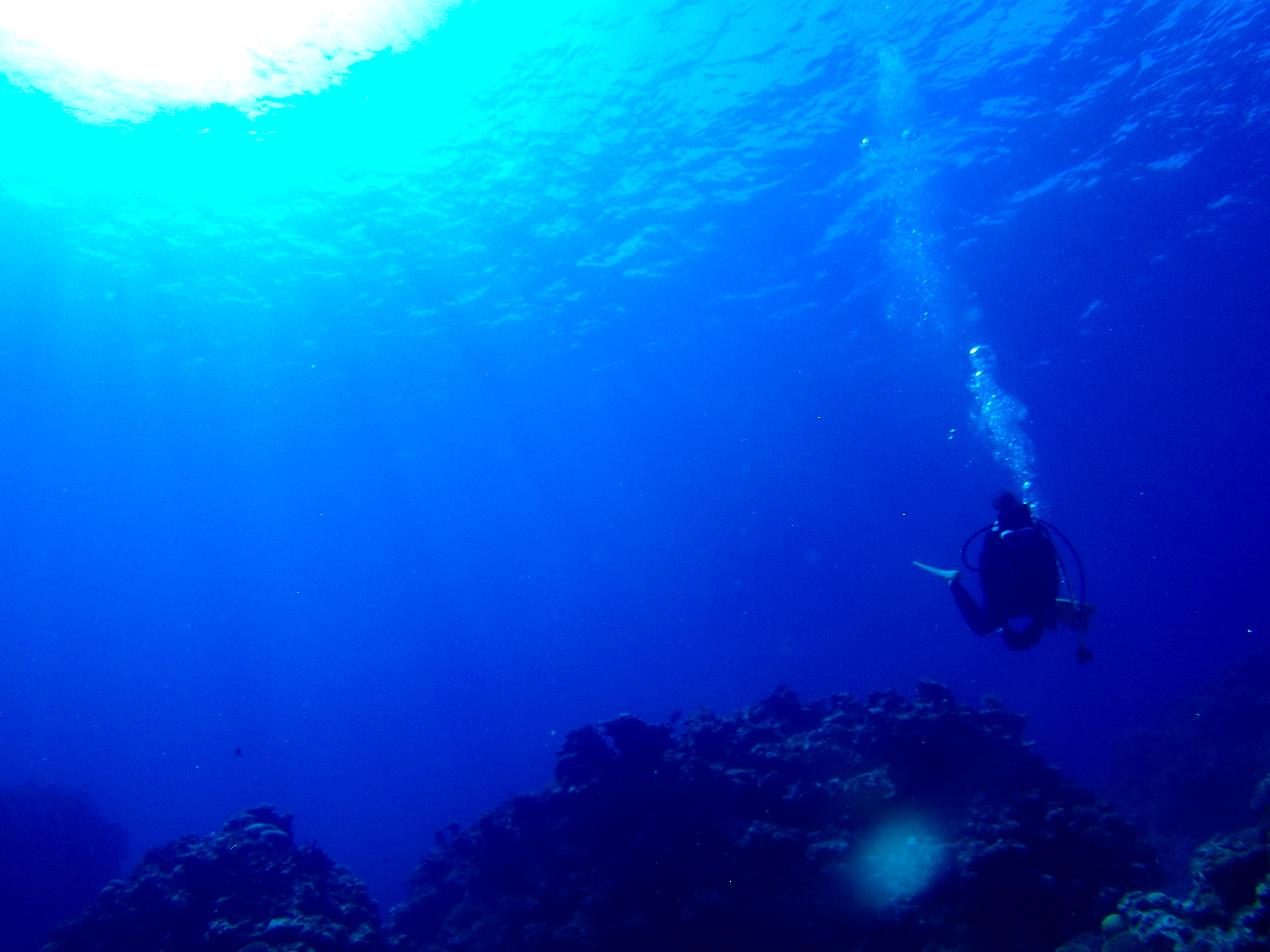 PADIアドバンスド講座で体験するダイビング