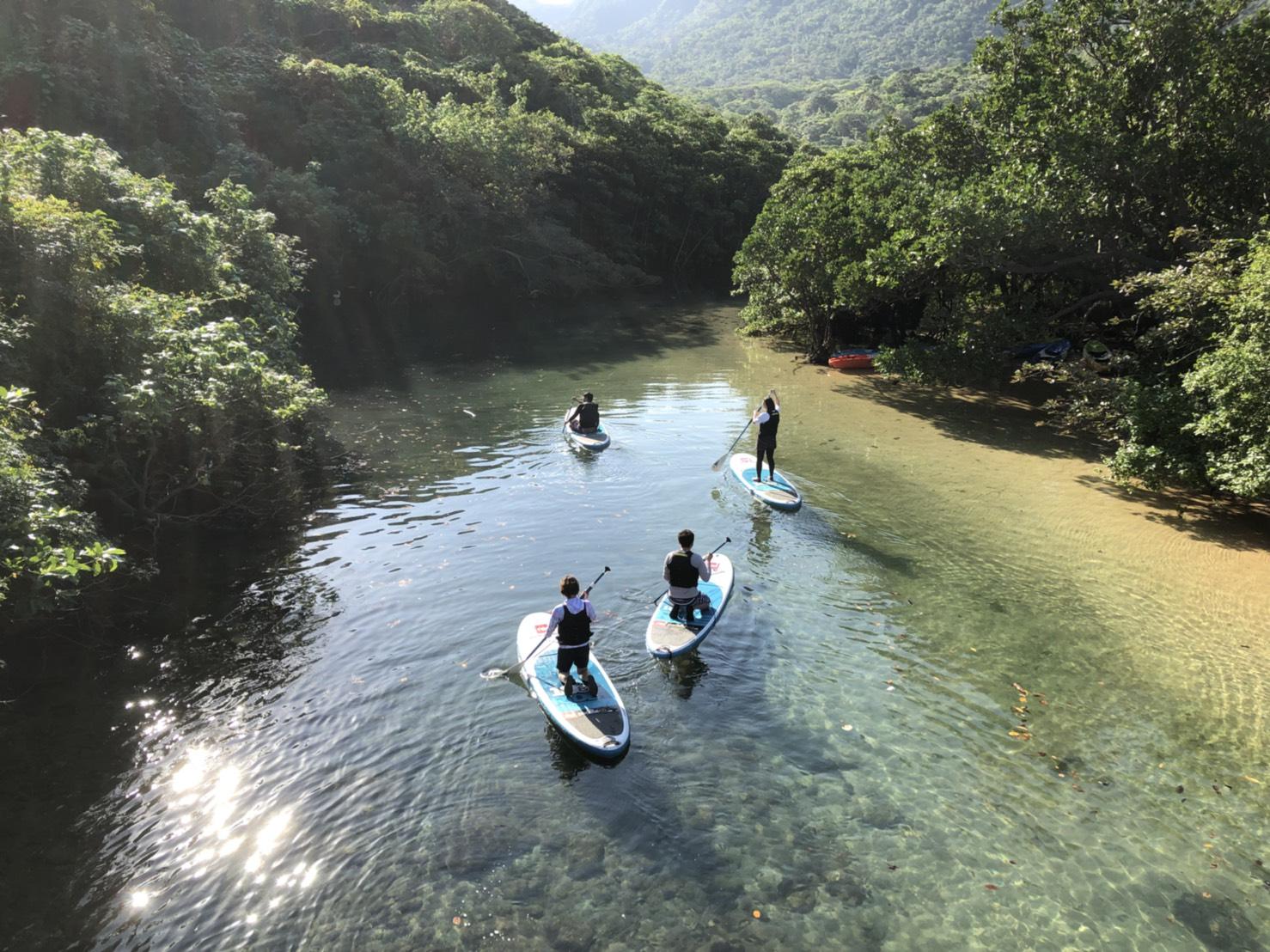 石垣島と西表島のセットプラン