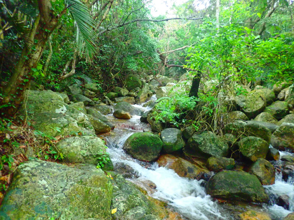 石垣島荒川の滝