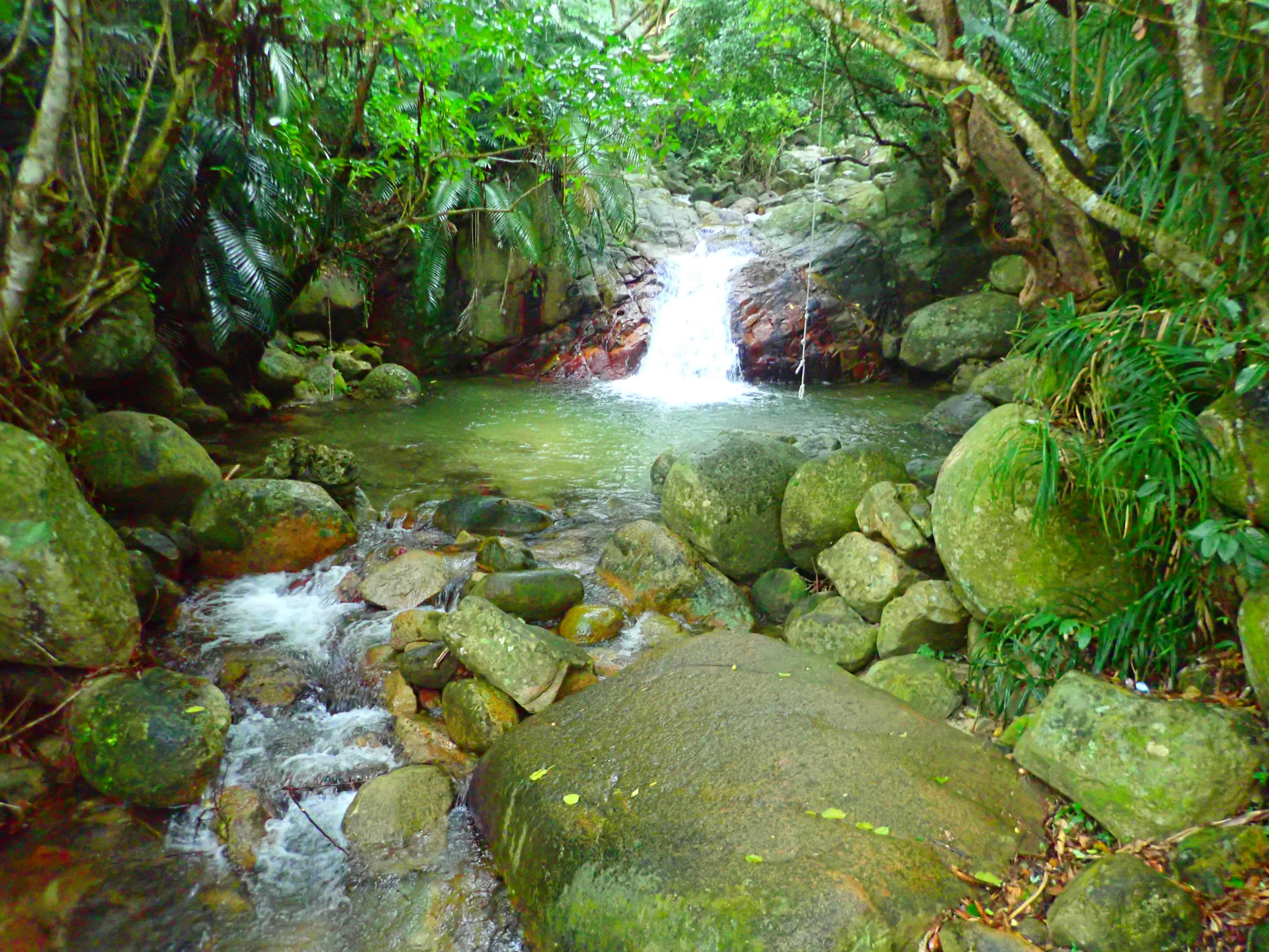 水遊びできる滝