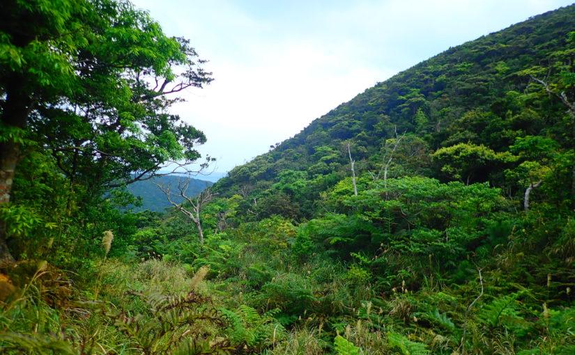 石垣島の於茂登岳