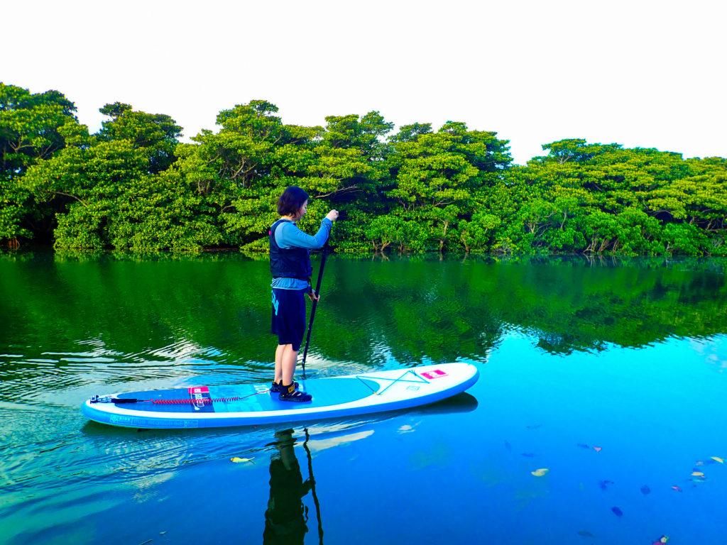 【地域共通クーポン対象】大人気定番コース!宮良川秘境マングローブSUPツアー(No.329)