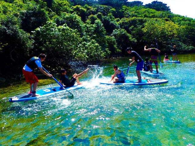 マングローブクルーズをしながら水遊び