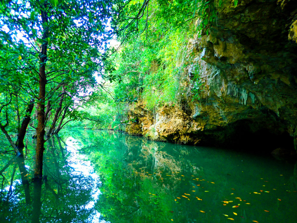 宮良川ではカヤック中に洞窟も見れる