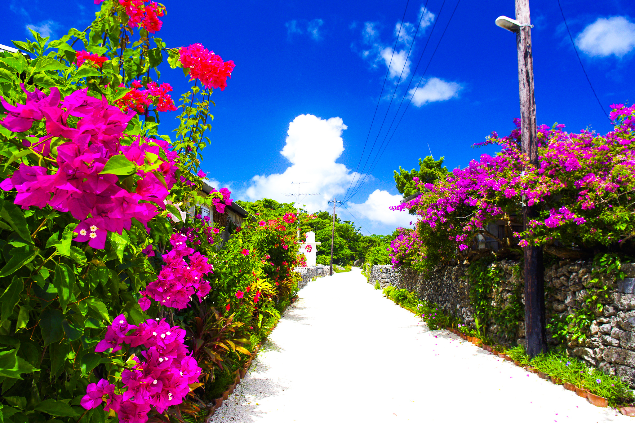 幻の島と竹富島のセットコース