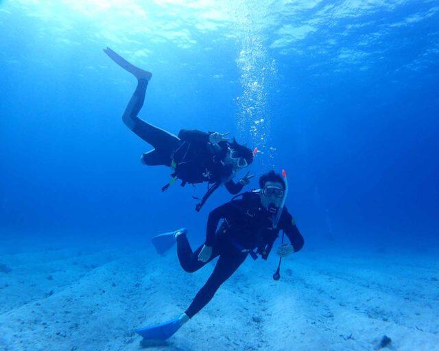 ダイビングabcdive