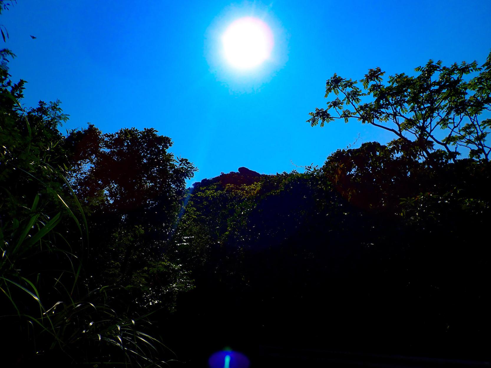 石垣島を一望できる