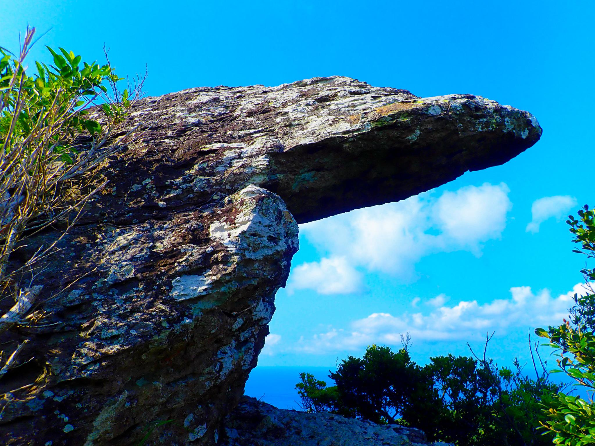 石垣島のトロルの舌トレッキングツアー