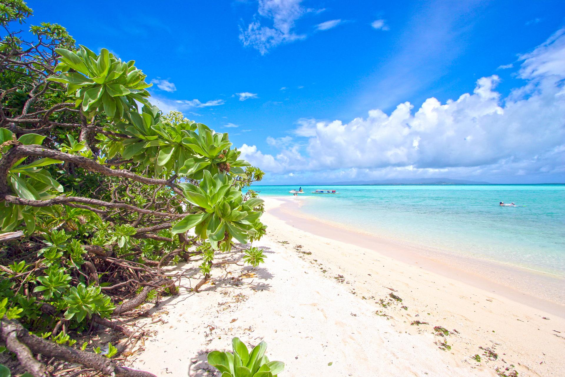 竹富島の美しいビーチ