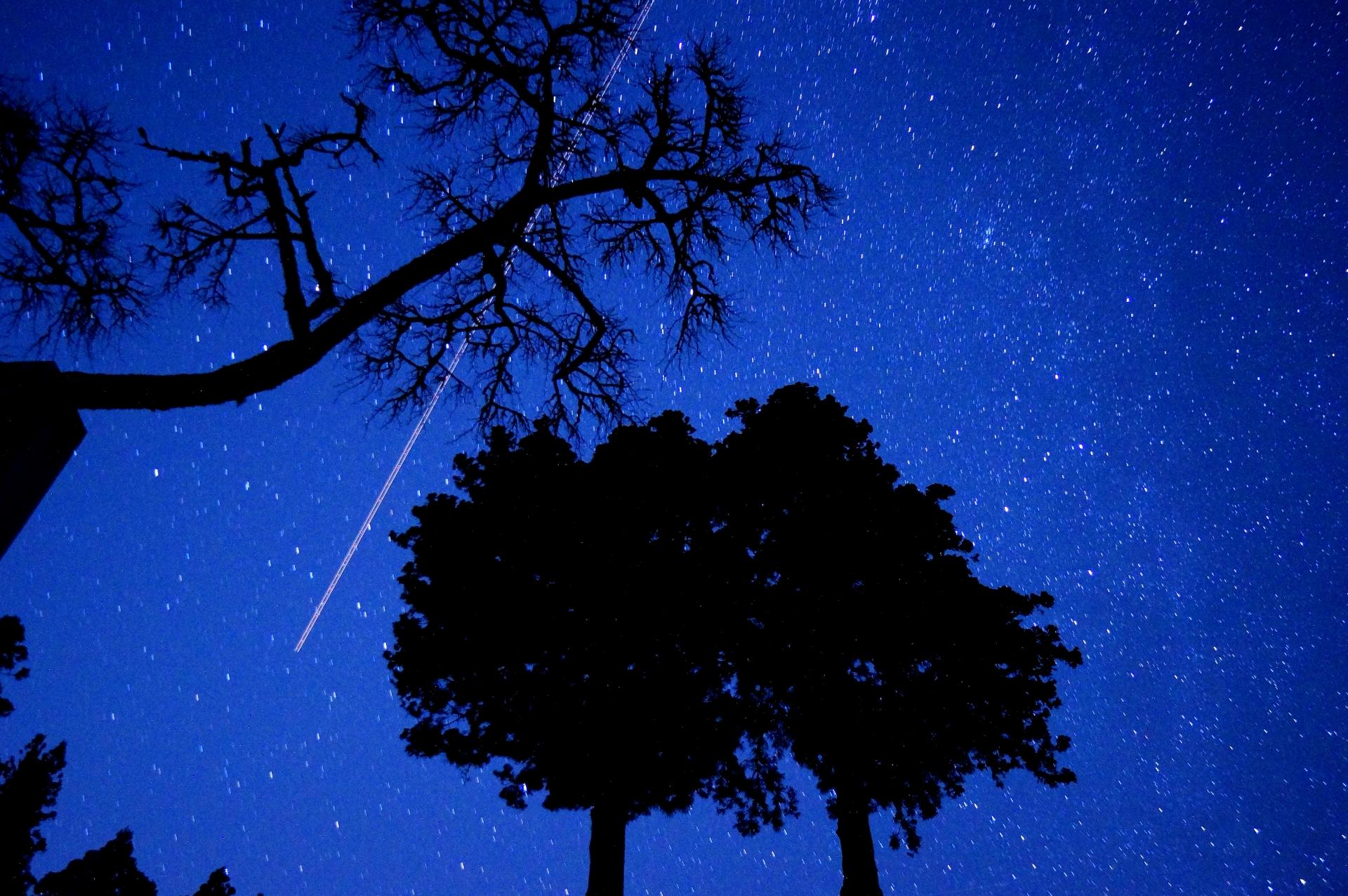 石垣島で見ることのできる満天の星