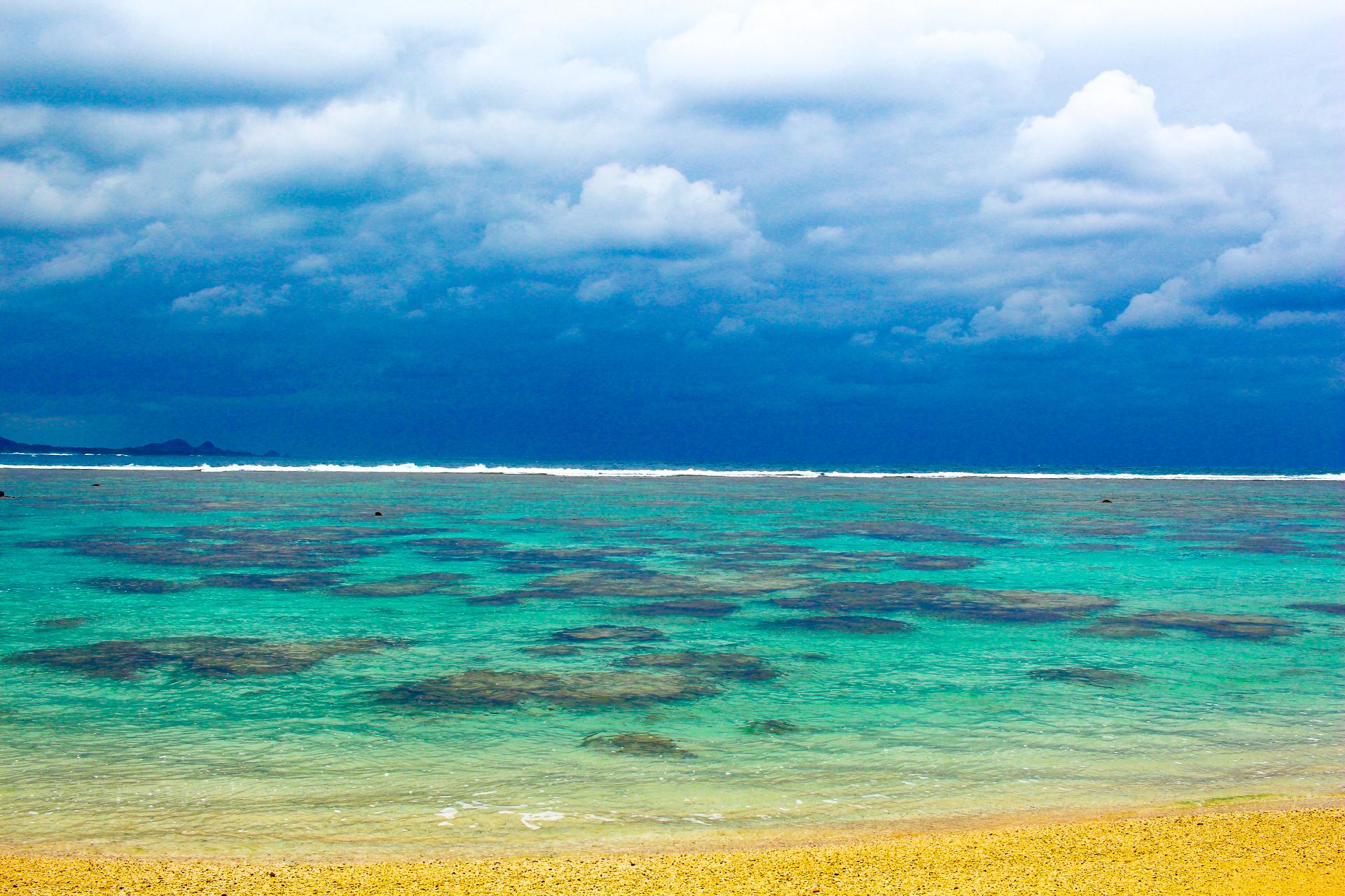 サンゴ礁と熱帯魚に出会える米原ビーチ