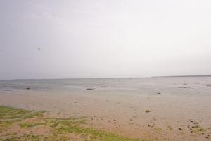 シャニシャニビーチ