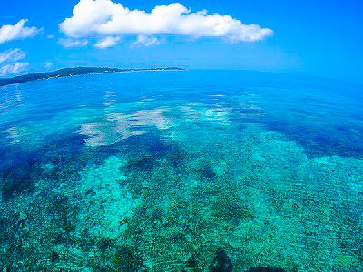 透明度抜群の石垣島の海をダイビングで体験