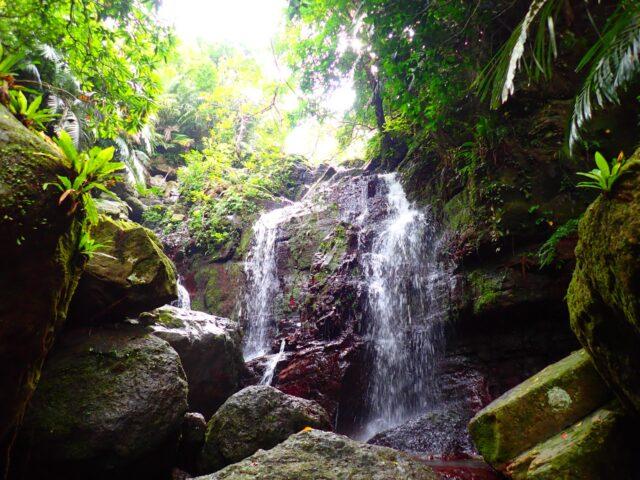 石垣島 屋比久の滝