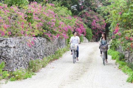 竹富島をサイクリング