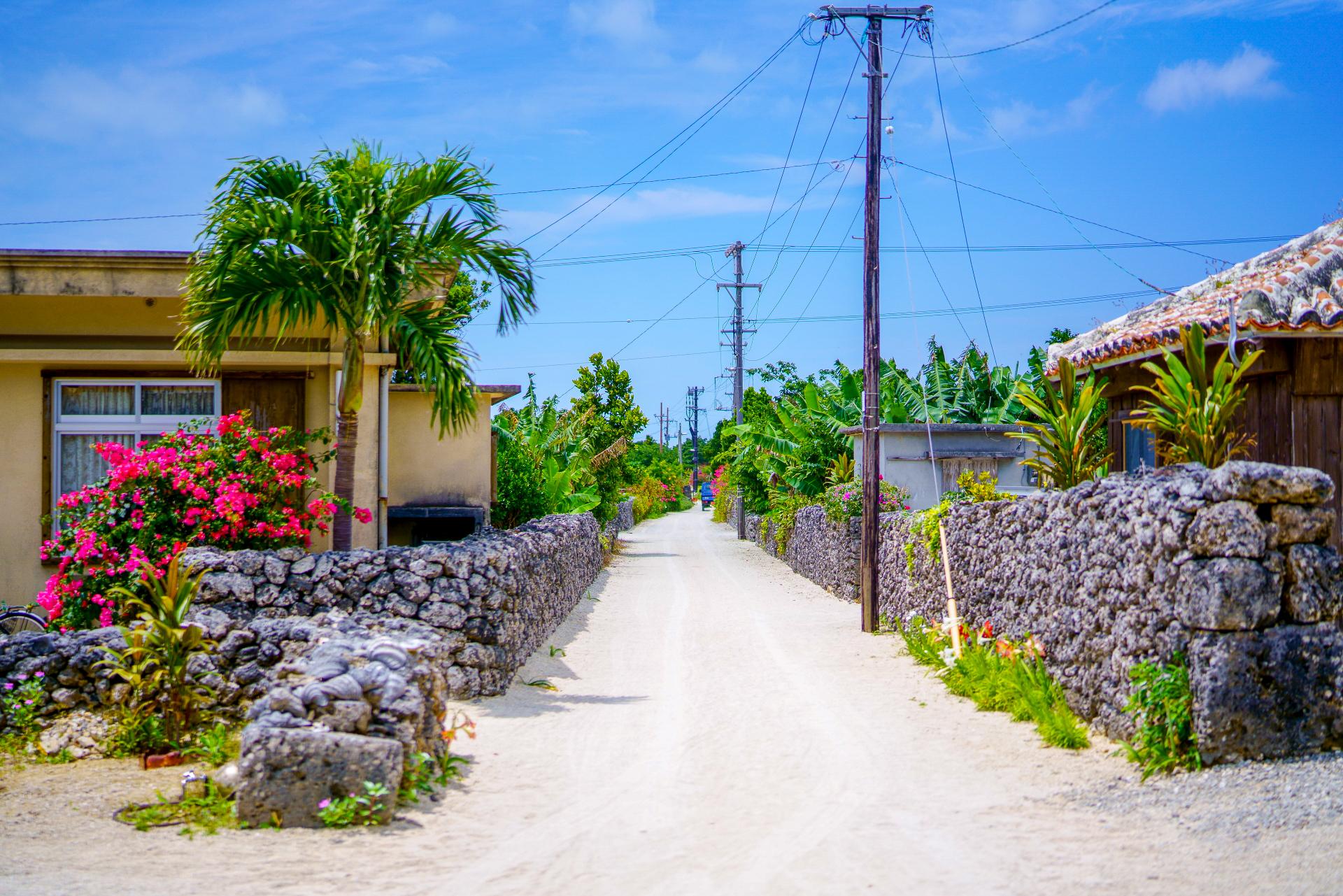 バラス島と竹富島のセットプラン