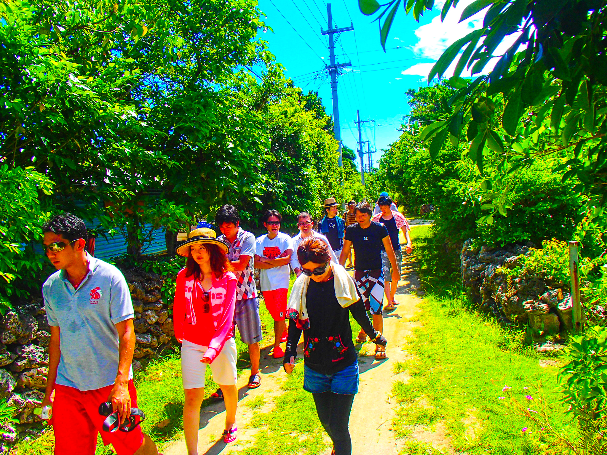 団体旅行で新城島の集落を散策