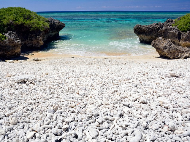サンゴの欠片が堆積された波照間島のサンゴの浜