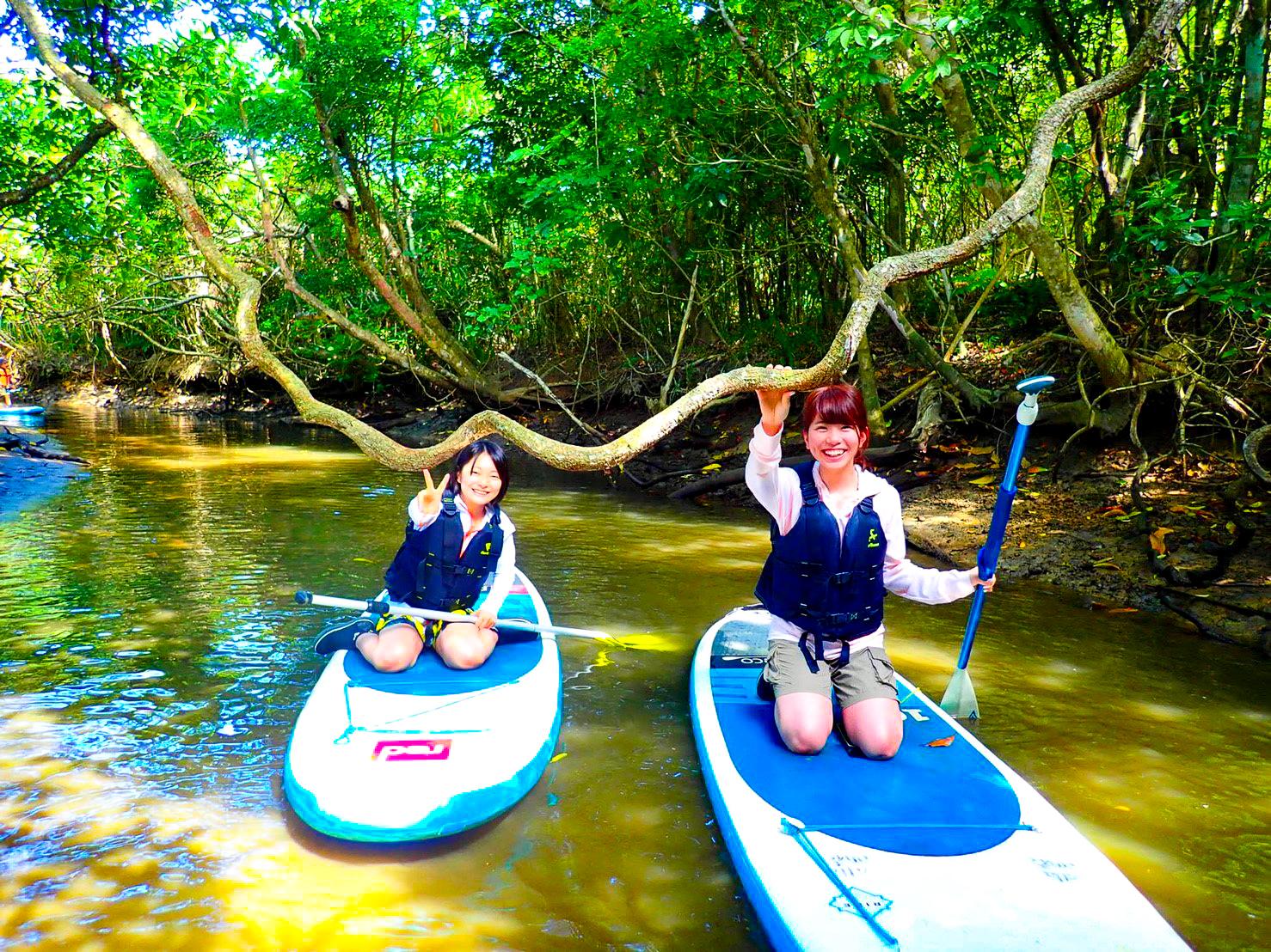 西表島マングローブ川でSUPツアー