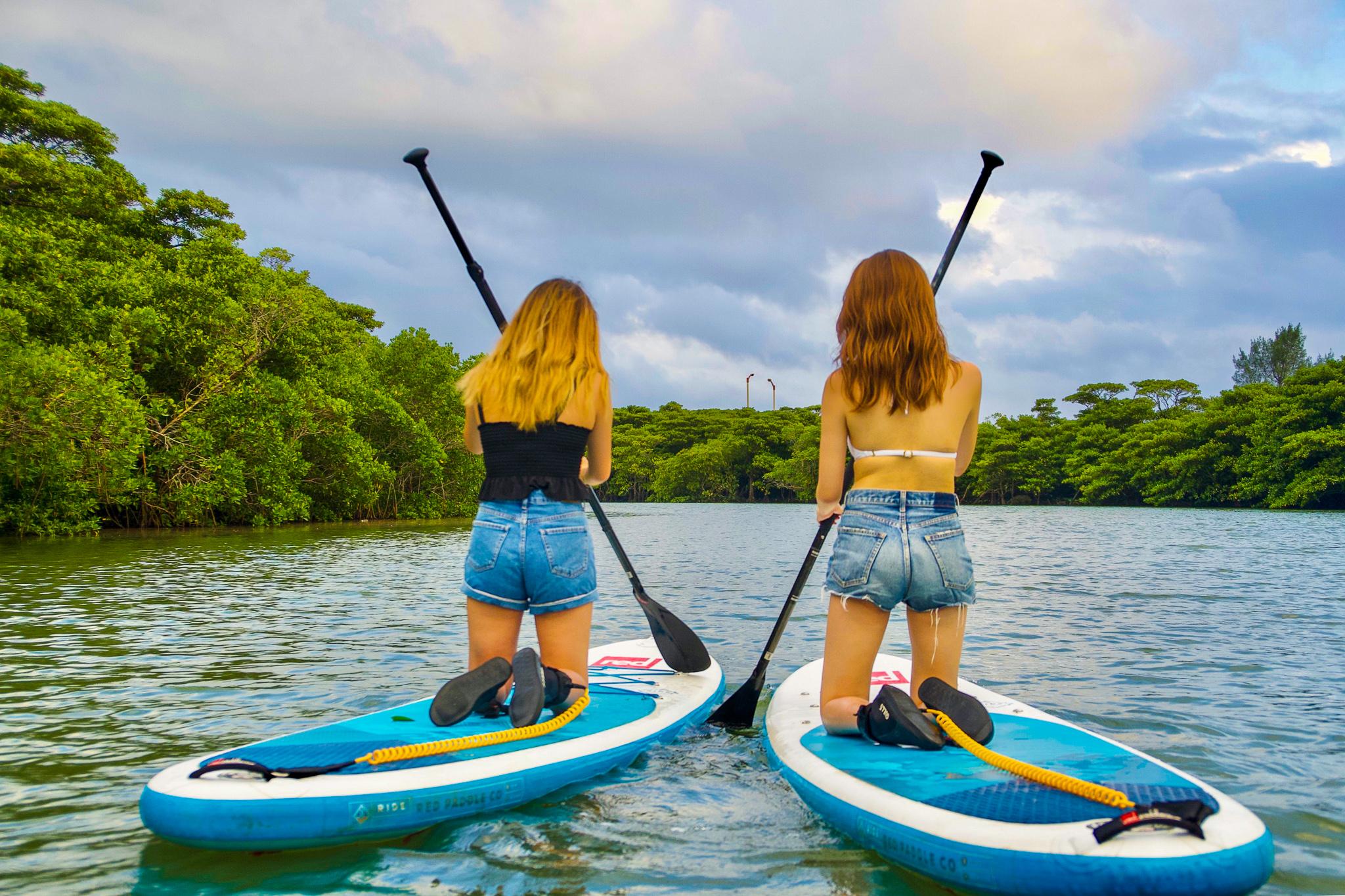 マングローブSUPを体験する女性たち