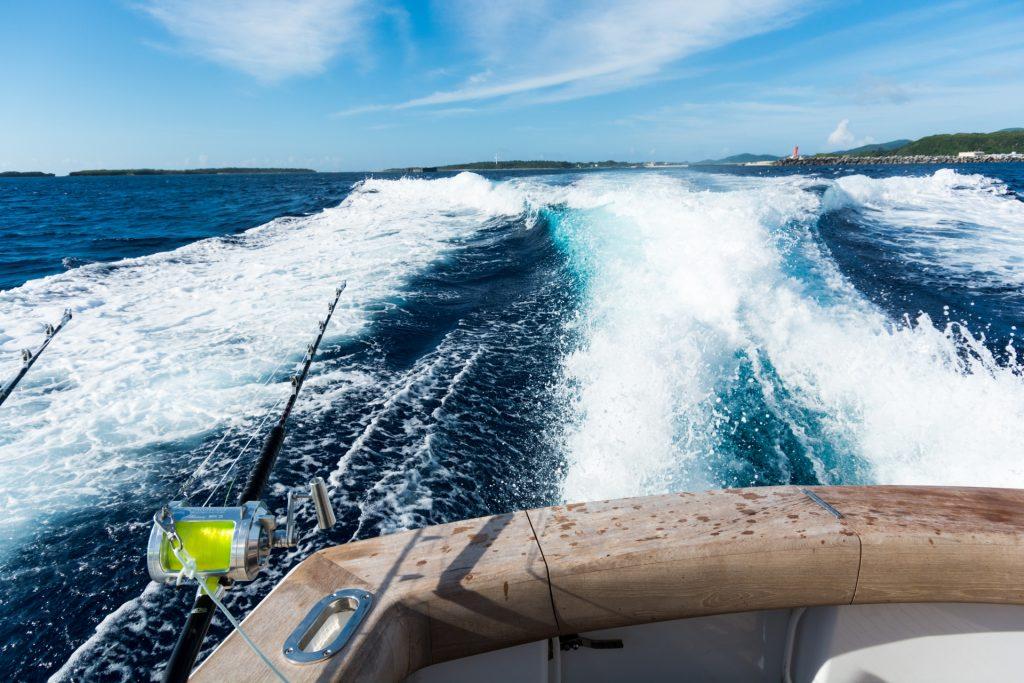 カジキが釣れる釣り体験