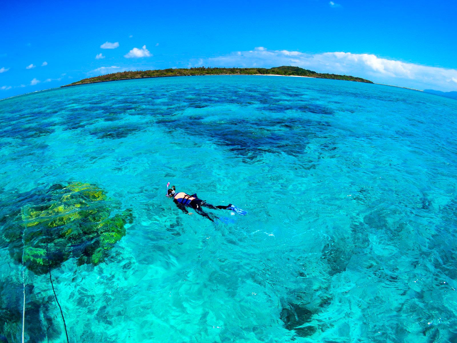 バラス島周辺でのサンゴシュノーケリング