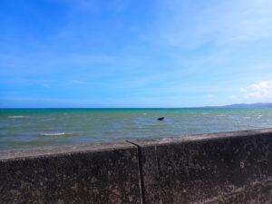 南風花海岸