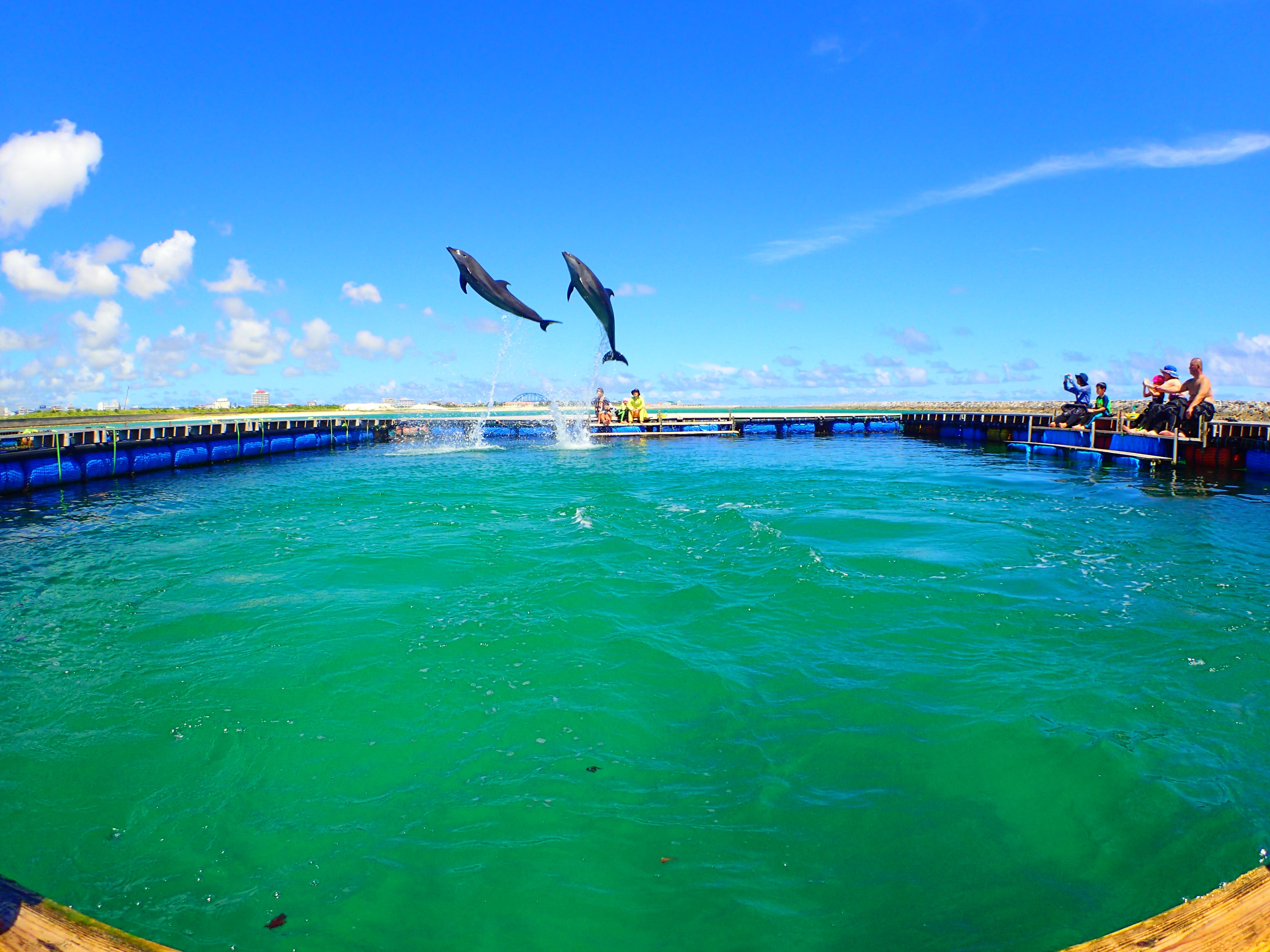イルカ鑑賞のできる人工の南ぬ浜町ビーチ