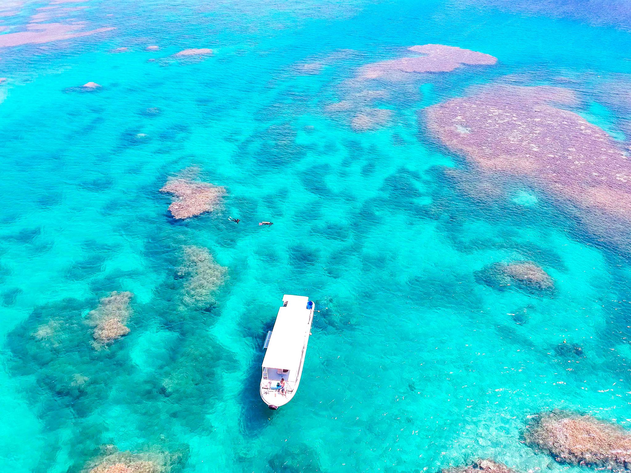 石西礁湖でシュノーケリングアクティビティ