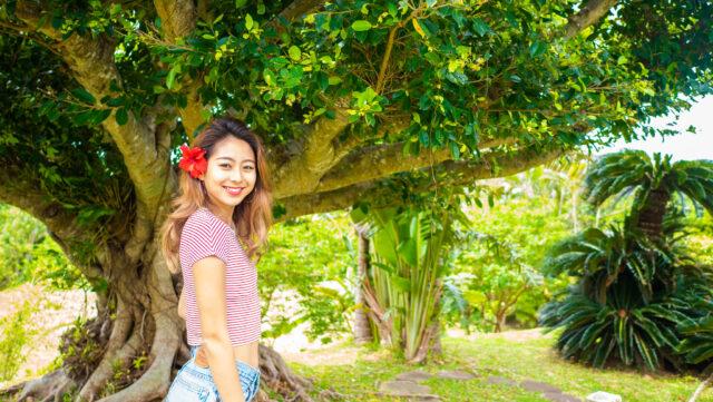8月の石垣島の風景