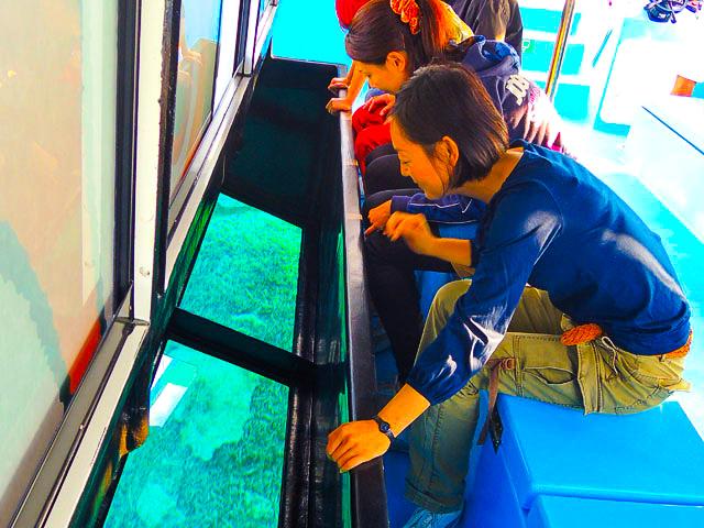 グラスボートで竹富島周辺の海を観察