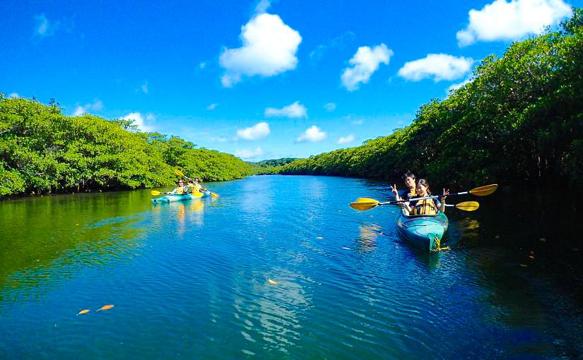 西表島のカヌーツアーを体験