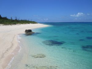 色鮮やかな西の浜