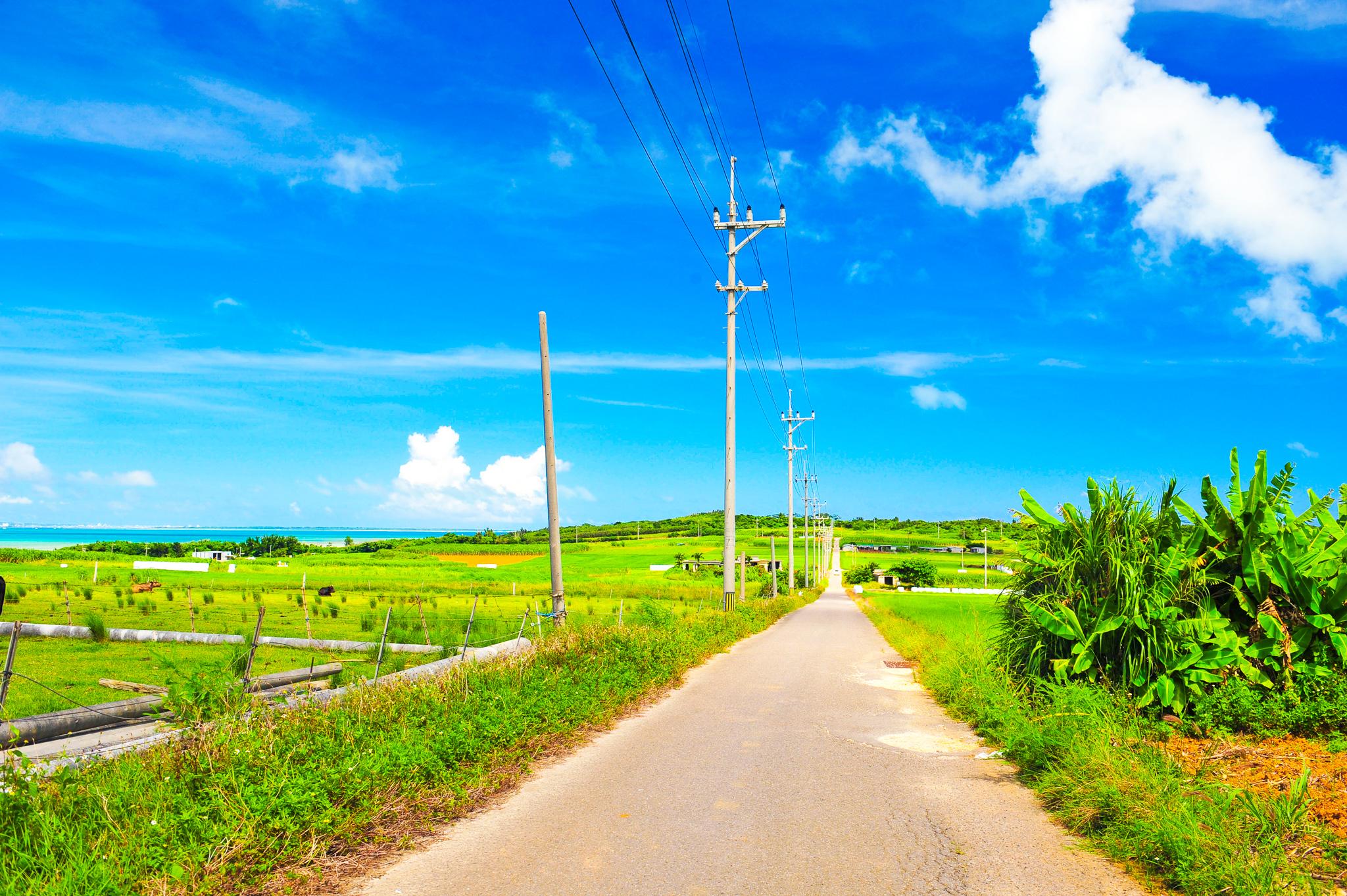 小浜島有数の見所であるシュガーロード
