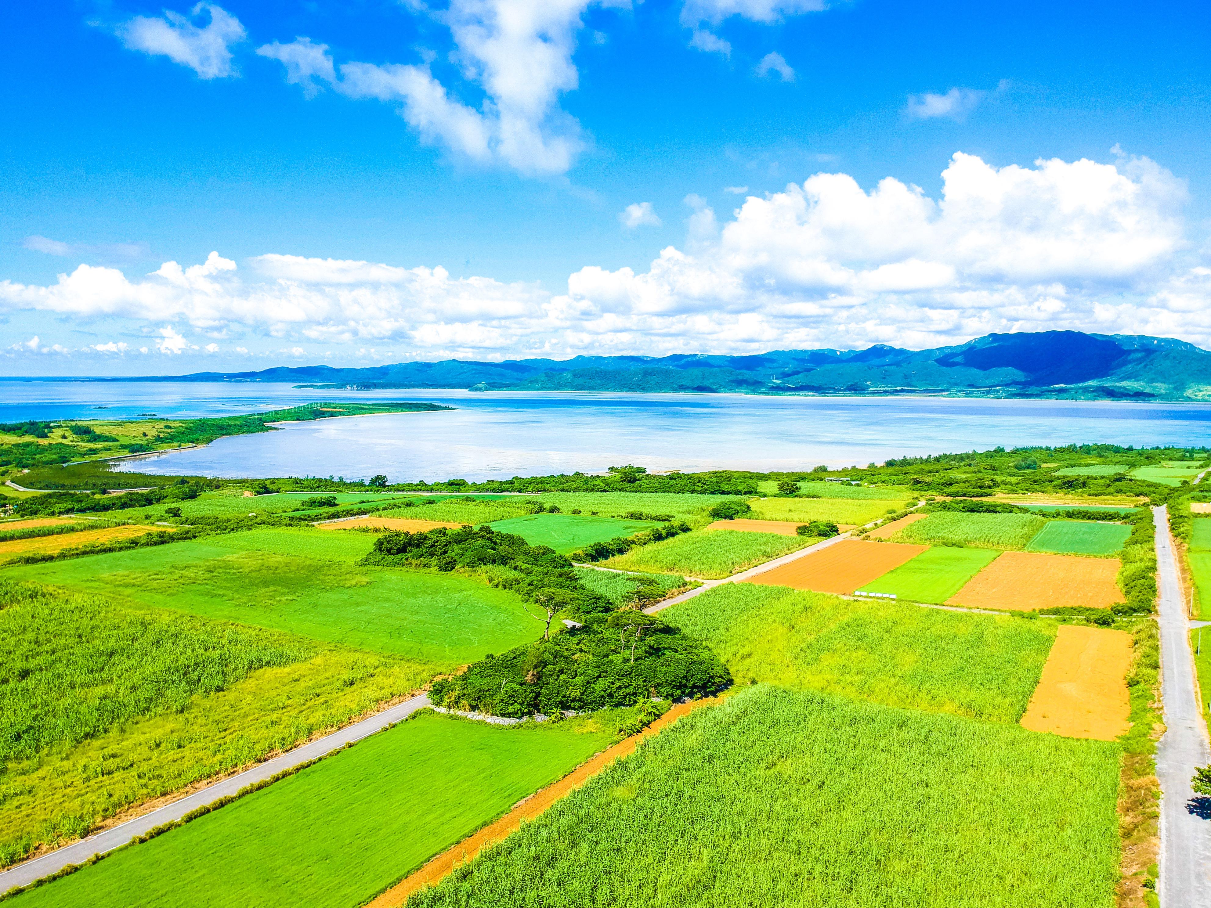小浜島の大岳からの絶景