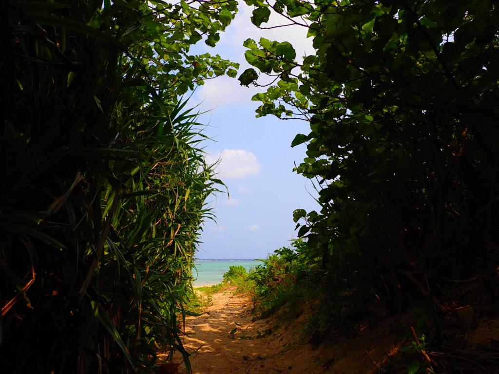 多田浜海岸